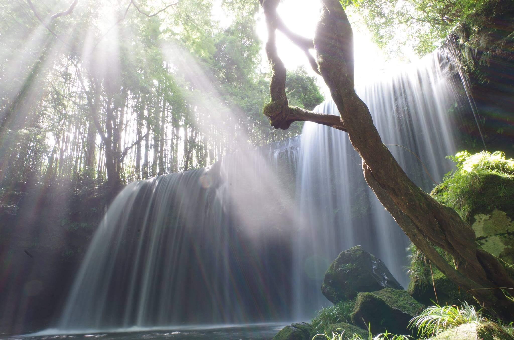 【鍋ヶ滝(なべがたき)】CMにもなった小国の神秘の滝。ライトアップ時期は要確認!
