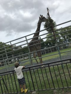 【熊本市東区 熊本市動植物園】家族みんなで楽しめる!動植物園〜動物エリア編〜