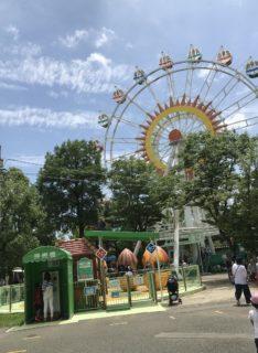 【熊本市動植物園】家族みんなで楽しめる!動植物園〜乗り物エリア編〜【熊本市東区健軍】