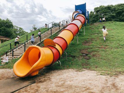 【熊本県民総合運動公園ちびっこ広場】自然あり遊具あり!大人も子どもも1日あそべる公園!【熊本市東区石原】