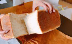 【VIKING  BAKERY F (バイキングベーカリーエフ)】高級食パン専門店では珍しいサンドイッチの販売もあります!《熊本市中央区新市街》