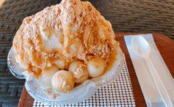 【モリチク】種類豊富なシェーブアイス!自分好みのオリジナルかき氷が楽しめるかき氷屋さん♬《上益城郡甲佐町》