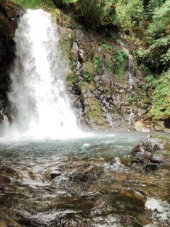 【白糸の滝公園】まるで白い糸!?涼を感じられる自然のオアシス《阿蘇郡西原村大字河原》