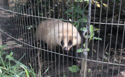 【熊本市動植物園】マニアこそ知る!?動植物園〜隠れスポット編〜《熊本市東区健軍》