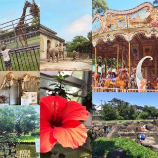 【12月16日更新!】動植物園マニアあゆママがおくる動植物園の魅力まとめました〜☆