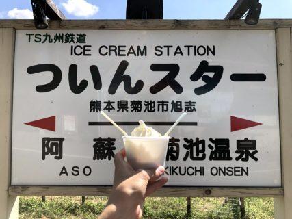 【ついんスター】芸術ソフトから色んな味のソフトまで!好みのソフトクリームに出会えるかも!?《菊池市旭志麓》