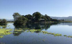 【浮島周辺水辺公園】釣り客にも人気!水辺の公園!【熊本県上益城郡嘉島町】