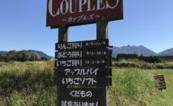 【果実の国 COUPLES-カップルズ-】季節のフルーツ狩りが楽しめる!《熊本県阿蘇市西町》