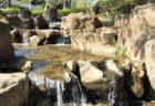 【石窯PIZZA Kapok-カポック-】隠れ家的なピッツェリア《熊本県玉名郡南関町》
