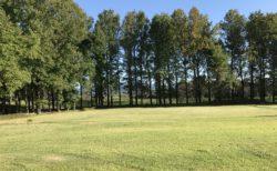 【戸島ふれあい広場 パークゴルフ場】パークゴルフと紅葉が楽しめる公園《熊本市東区戸島》