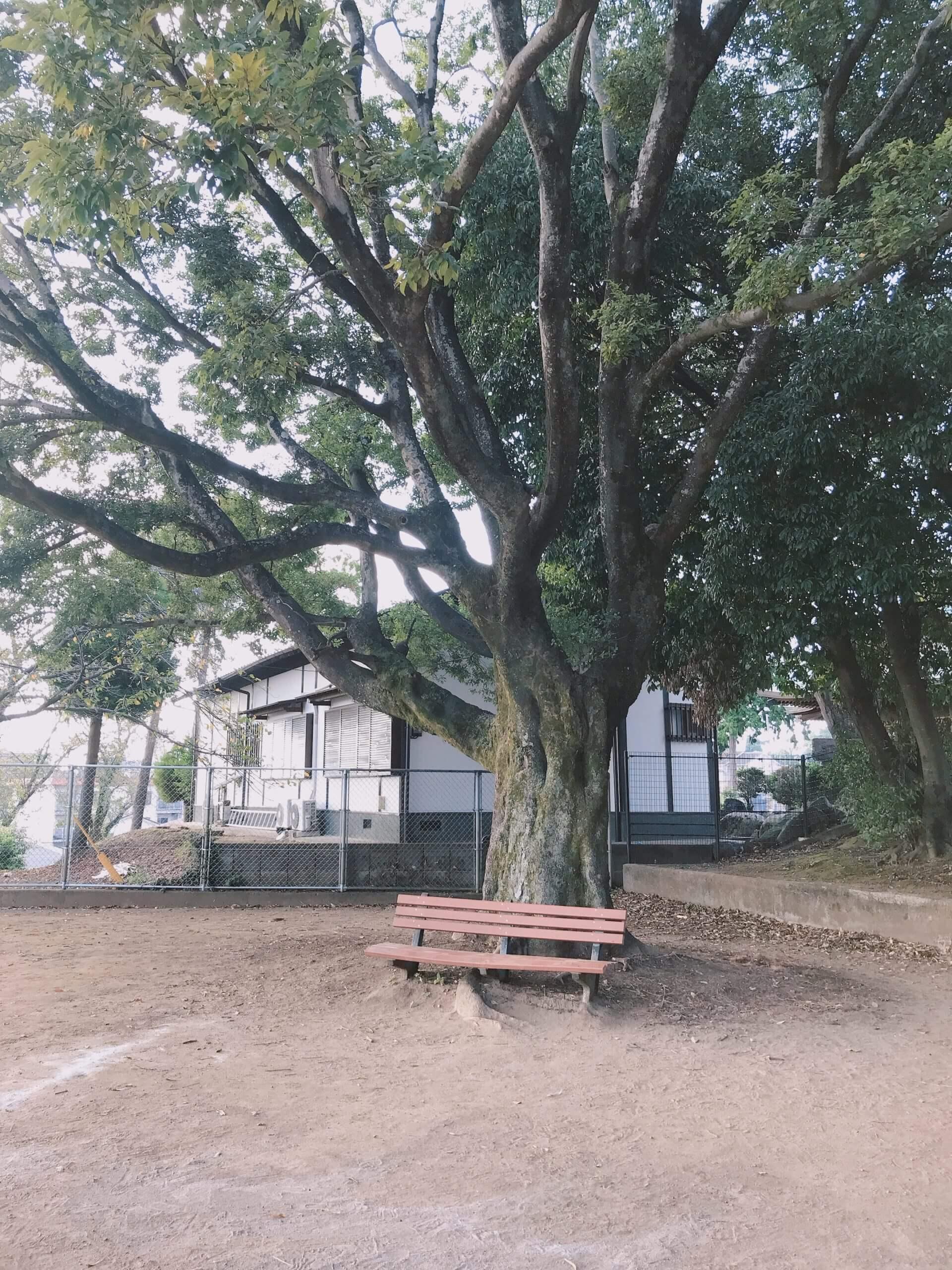 【健軍上山下公園】住宅地の中の小さなもののけの世界!《熊本市東区健軍》