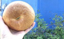 【パンとお菓子のとこわか】パンからクッキーまで揃うランチにもおやつにもぴったりなお店《菊池市西寺》