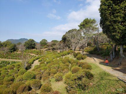 【田原坂公園】歴史と自然あふれる公園《熊本市北区植木町豊岡》