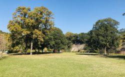 【八景水谷公園】水の科学館のお隣!広い芝生と遊具もある公園!《熊本市北区八景水谷》