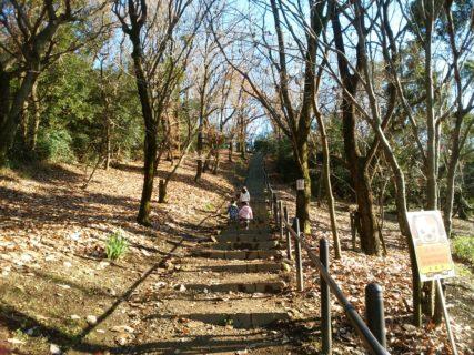 【飯高山公園】夏は虫捕り!秋はどんぐり拾い!体力のあり余っている子どもたちにピッタリの山の公園《合志市幾久富》