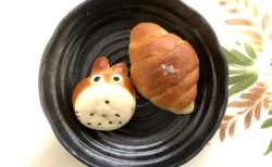 【Boulangerie 9B -ブーランジェリー キュービー-】人気なパン屋さんの全粒粉塩パンが美味しい優しいで最強説です《熊本市南区馬渡》