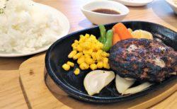 【前川珈琲レストラン】農家直送野菜を使用しているレストラン♪《菊池郡菊陽町光の森》