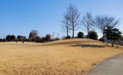 【憩いの森公園】のんびりゆったりできる広い芝生公園《菊池市泗水町吉富》