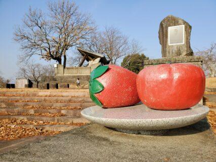 【山の上展望公園】春は桜☆夜は満点の星空☆☆山の上の静かな公園《玉名市横島町》