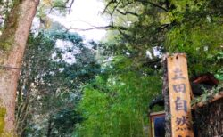 【立田自然公園】細川家菩提寺「泰勝寺」跡♪自然豊かな史跡散策《熊本市中央区黒髪》