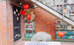 【DECORARE(デコラーレ)】種類豊富なチーズ・ハム&ワインのお店!ジャージーヨーグルトは是非食べてみて☆《熊本市中央区水道町》