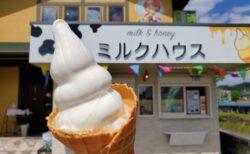 【西岡養蜂園蜂蜜専門店にしおか – ミルクハウス – 】絶品☆蜂蜜ソフトクリーム☆食べてみてっ!《八代市岡町》