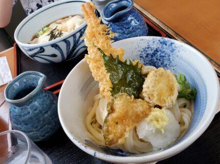 【てる山】熊本で本場の讃岐うどんが食べれちゃう!《熊本市東区画図町》