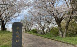 【木山城跡公園】お花見スポットとしても有名な城跡!《上益城郡益城町寺迫》