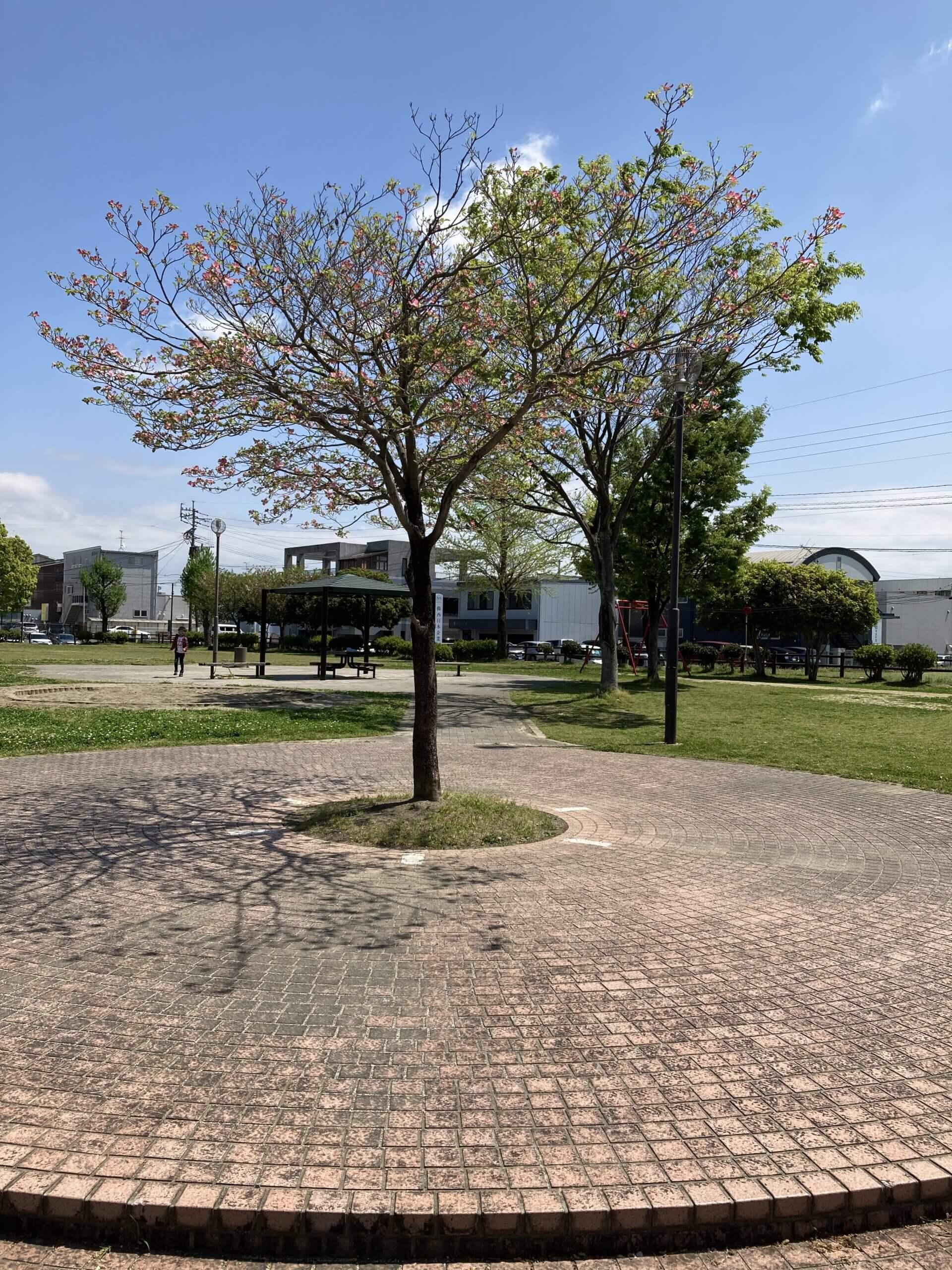 【江越二丁目公園】みんな大好き!ターザンロープのある公園!《熊本市南区江越》