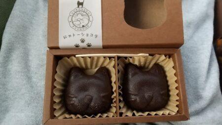 【おやつ家 菓音-かのん-】私のガトーショコラが猫型に、その名も「にゃトーショコラ」《上天草市大矢野町》