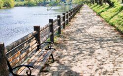 【立岡自然公園】桜だけじゃない、新緑や藤、花菖蒲も楽しめる♪池の周りの散策ができる公園《宇土市花園町》