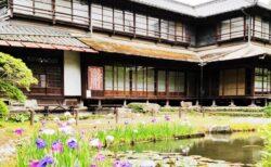 【松浜軒(しょうひんけん)】花菖蒲が見頃♪池の周りの散策が楽しめる庭園《八代市北の丸町》