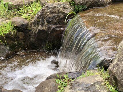 【矢護川公園 – 菊池郡大津町矢護川 – 】小さいお子さんから遊べる水遊びスポット