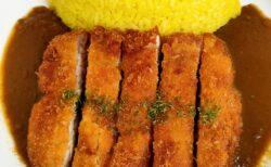 【カレーハウス ギーー熊本市東区湖東ー】人気のチキンカツカレーがクセになる美味さ!!!