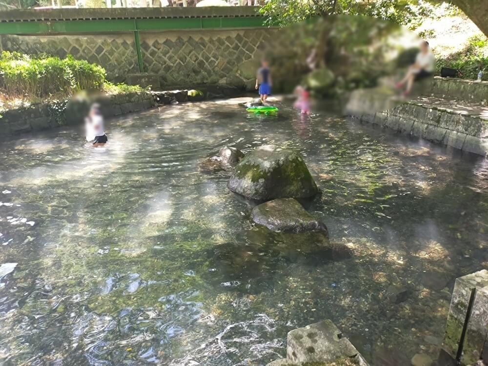 【年ノ神公園-玉名郡玉東町-】猛暑に行きたい天然の水源プールはしびれる冷たさ!